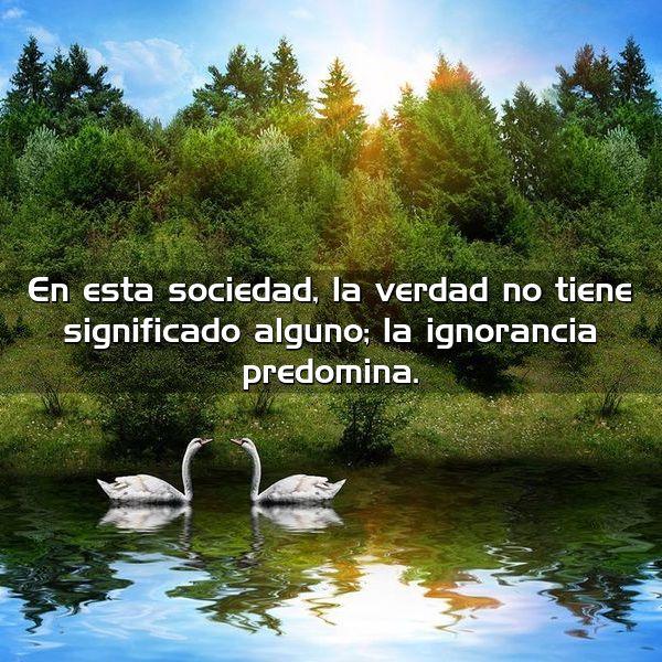 en esta sociedad la verdad no tiene significado alguno la ignorancia predomina