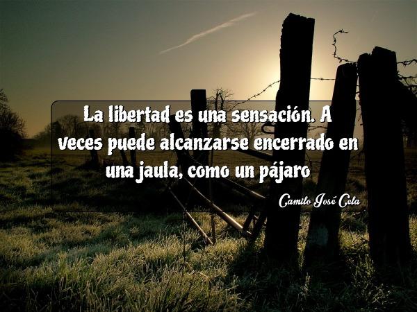 la libertad es una sensacion a veces puede alcanzarse encerrado en una jaula como un pajaro camilo jose cela