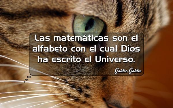 las matematicas son el alfabeto con el cual dios ha escrito el universo galileo galilei