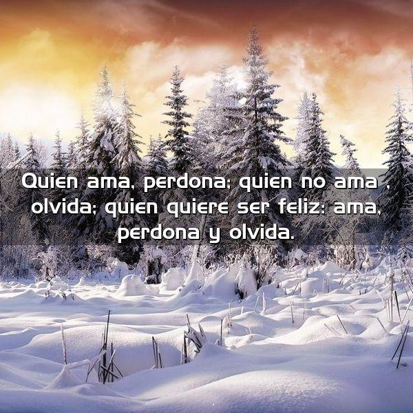 quien ama perdona quien no ama olvida quien quiere ser feliz ama perdona y olvida