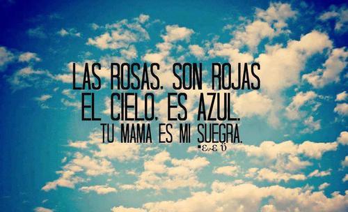 Las rosas son rojas. El cielo es azul. Tu mamá es mi suegra