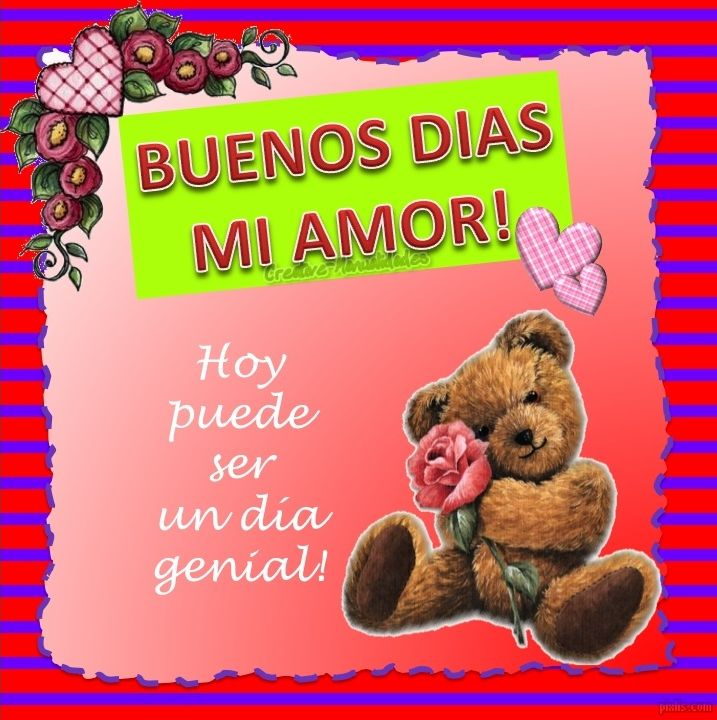 Buenos Dias Mi Amor Hoy Puede Ser Un Dia Genial Imagenes Con Frases