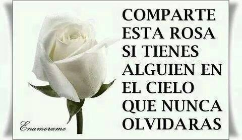 Comparte esta rosa si tienes alguien en el cielo que nunca olvidarás