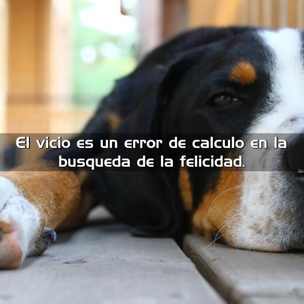 El vicio es un error de cálculo en la búsqueda de la felicidad