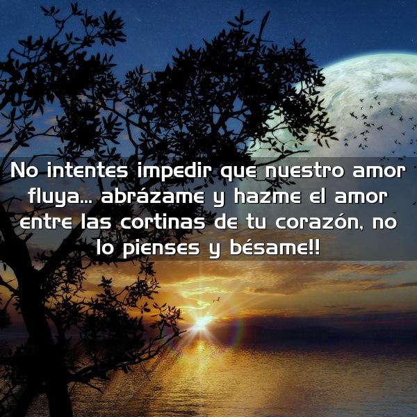 No intentes impedir que nuestro amor fluya... abrázame y hazme el amor entre las cortinas de tu corazón n lo pienses y bésame