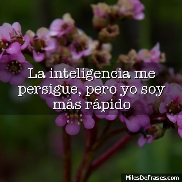 La inteligencia me persigue pero yo soy más rápido
