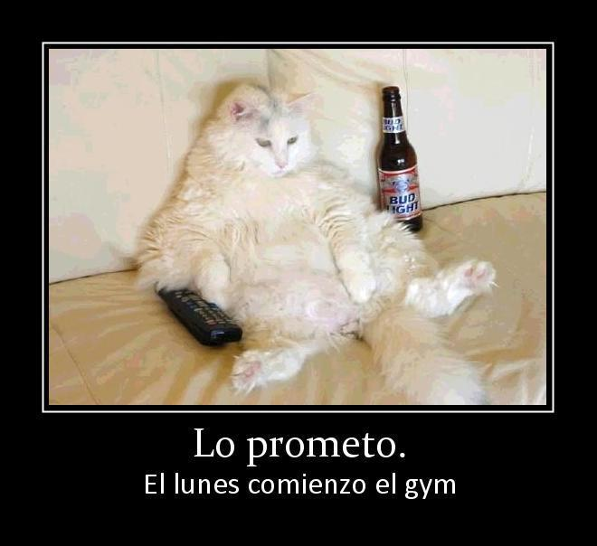 Lo prometo. El lunes comienzo el gym