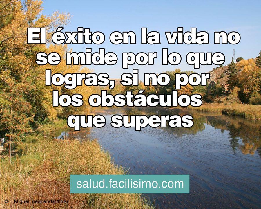 El éxito en la vida no se mide por lo que logras sino por los obstáculos que superas