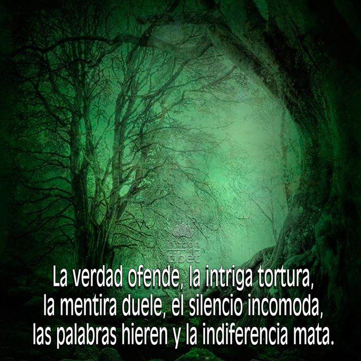 La verdad ofende la intriga tortura la mentira duele el silencio incomoda las palabras hieren y la indiferencia mata