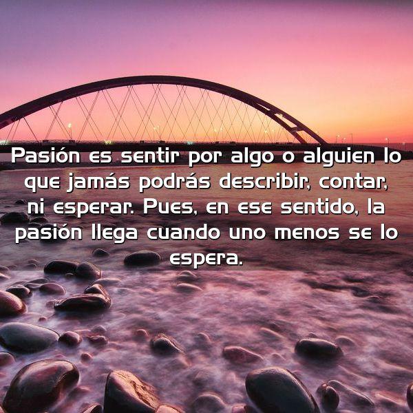 pasion es sentir por algo o alguien lo que jamas podras describir contar ni esperar