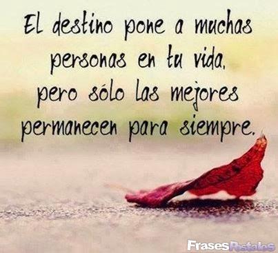 El destino pone a muchas personas en tu vida pero sólo las mejores permanecen para siempre
