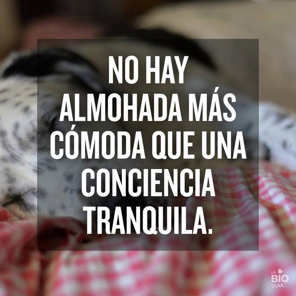 No hay almohada mas comoda que una conciencia tranquila