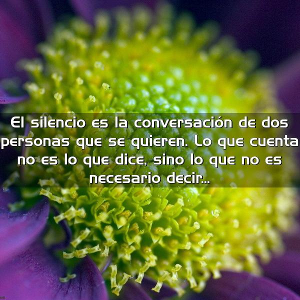 el silencio es la conversacion de dos personas que se quieren