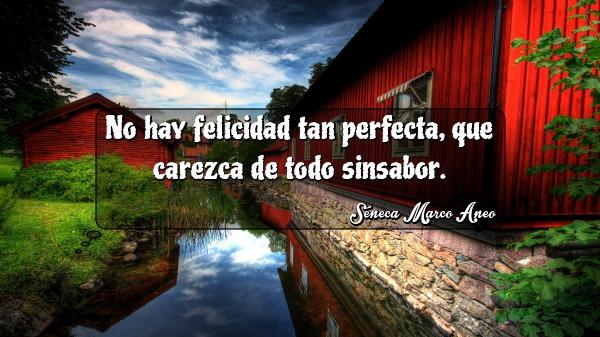 no hay felicidad tan perfecta que carezca de todo sinsabor seneca