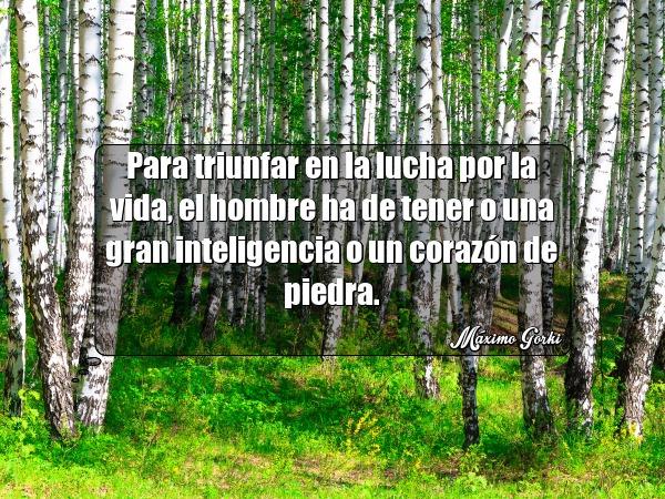 para triunfar en la lucha por la vida el hombre ha de tener o una gran inteligencia o un corazon de piedra maximo gorki