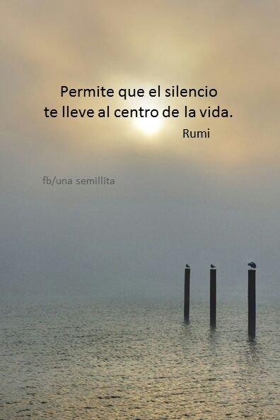 permite que el silencio te lleve al centro de la vida